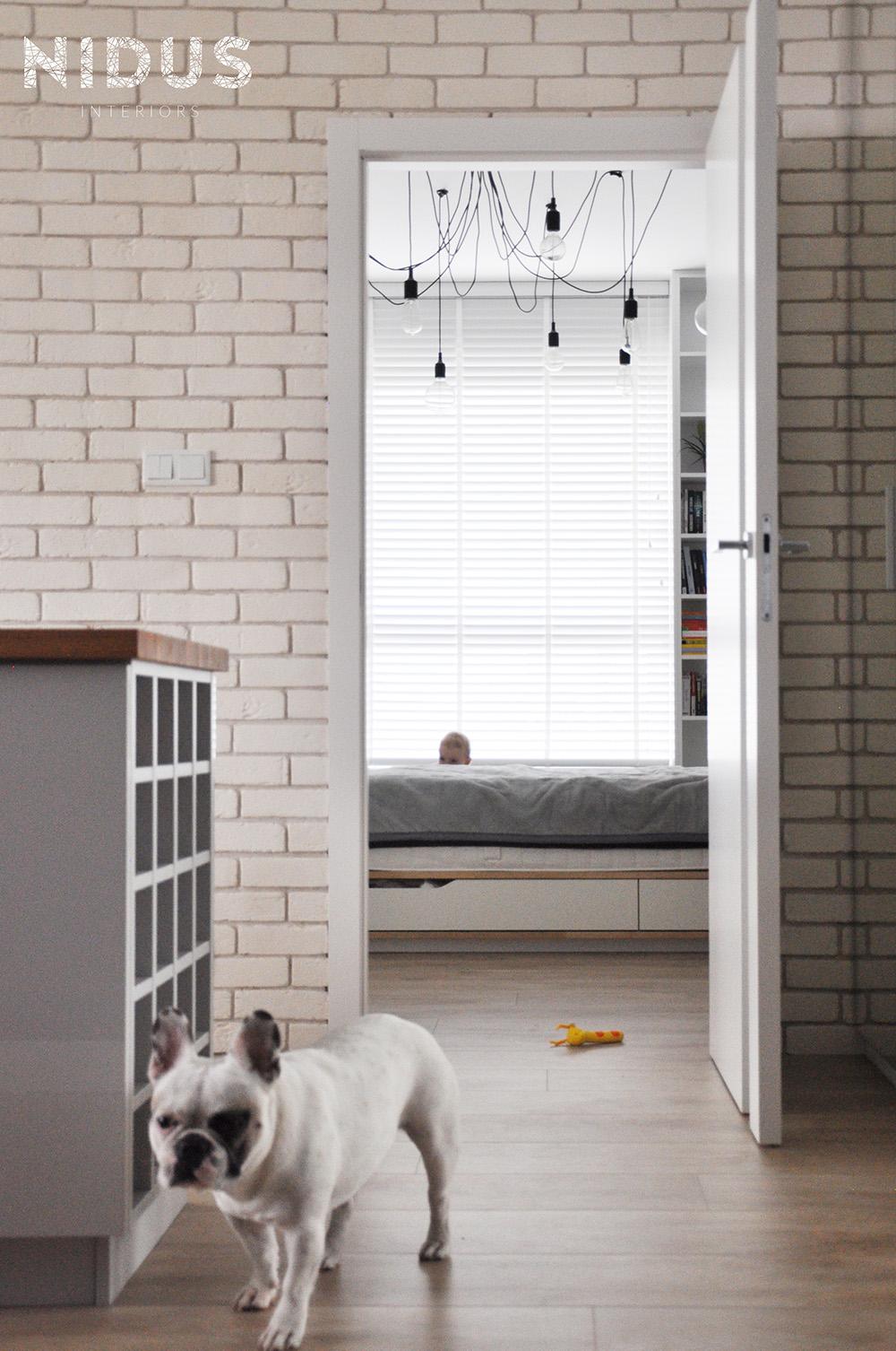 Odporna na zwierzęta podłoga w nowoczesnym mieszkaniu